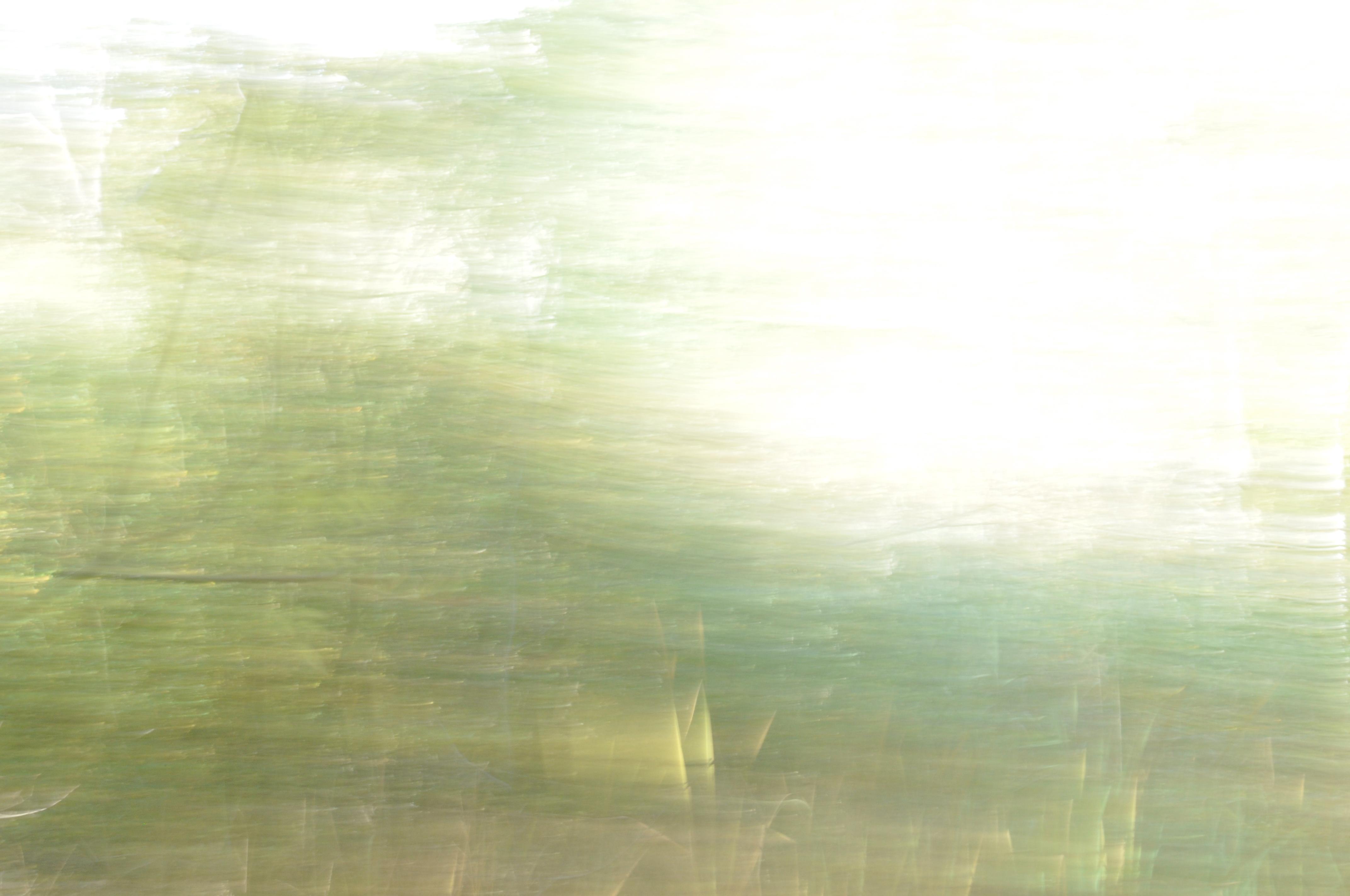 ElfenLicht 2, 2012